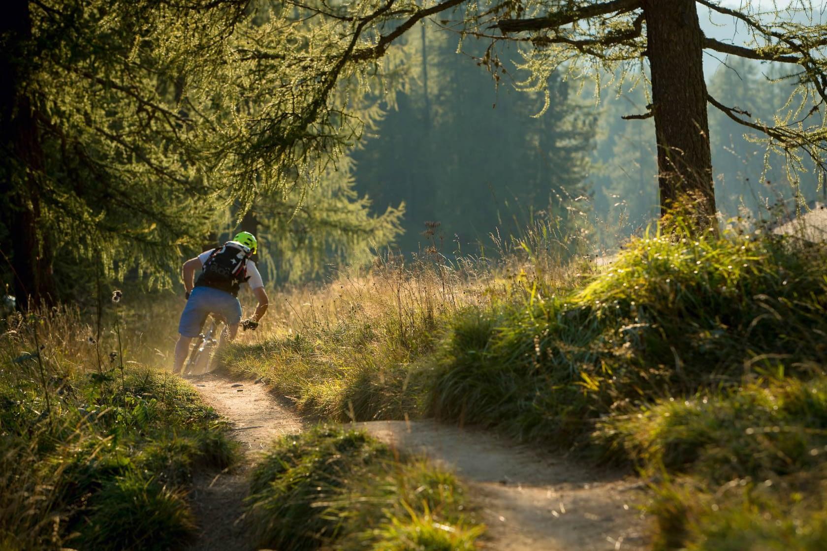 Mountainbike Waldwege, die Fahrgeschick verlangen.