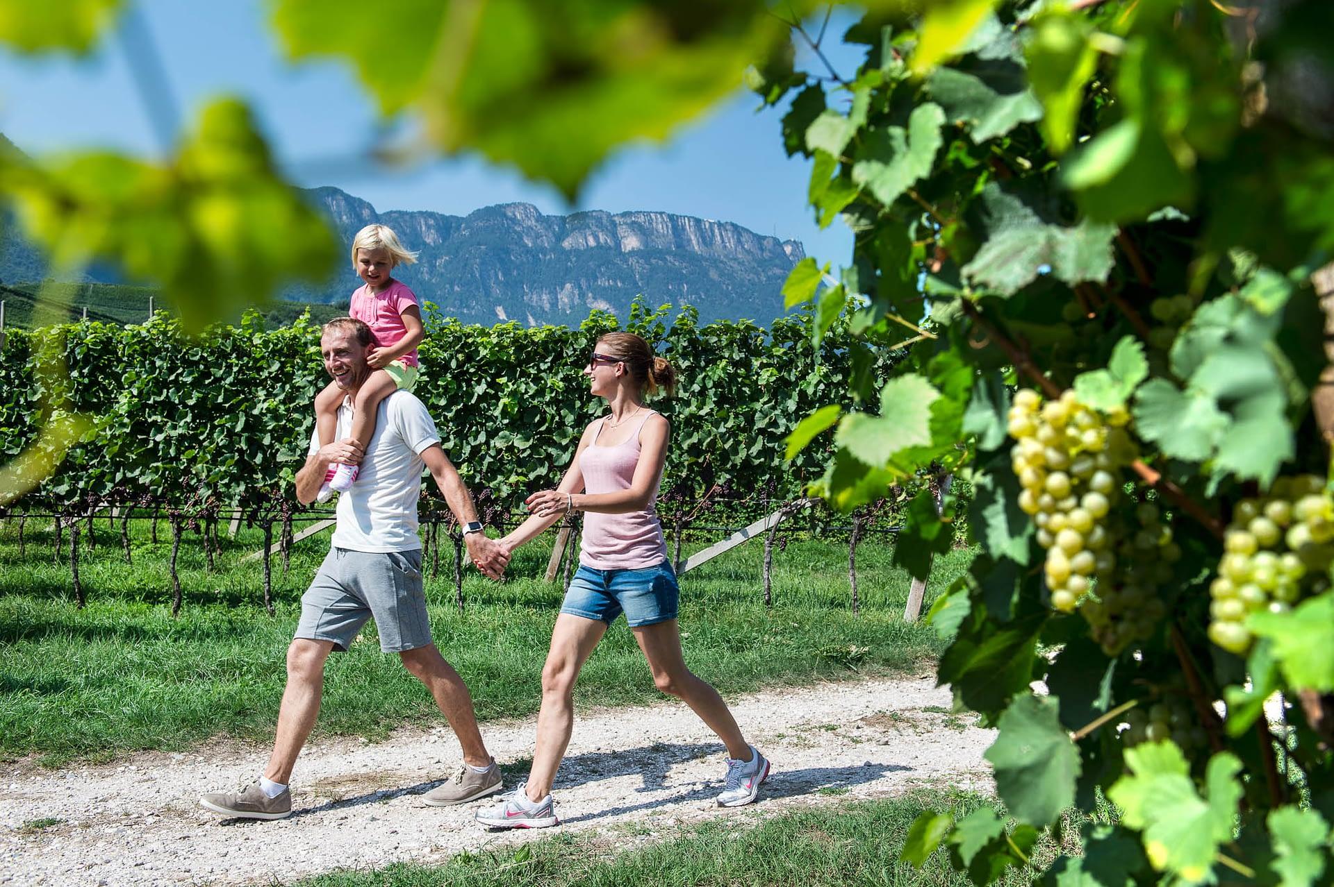 Familienspaziergang durch die Weinberge