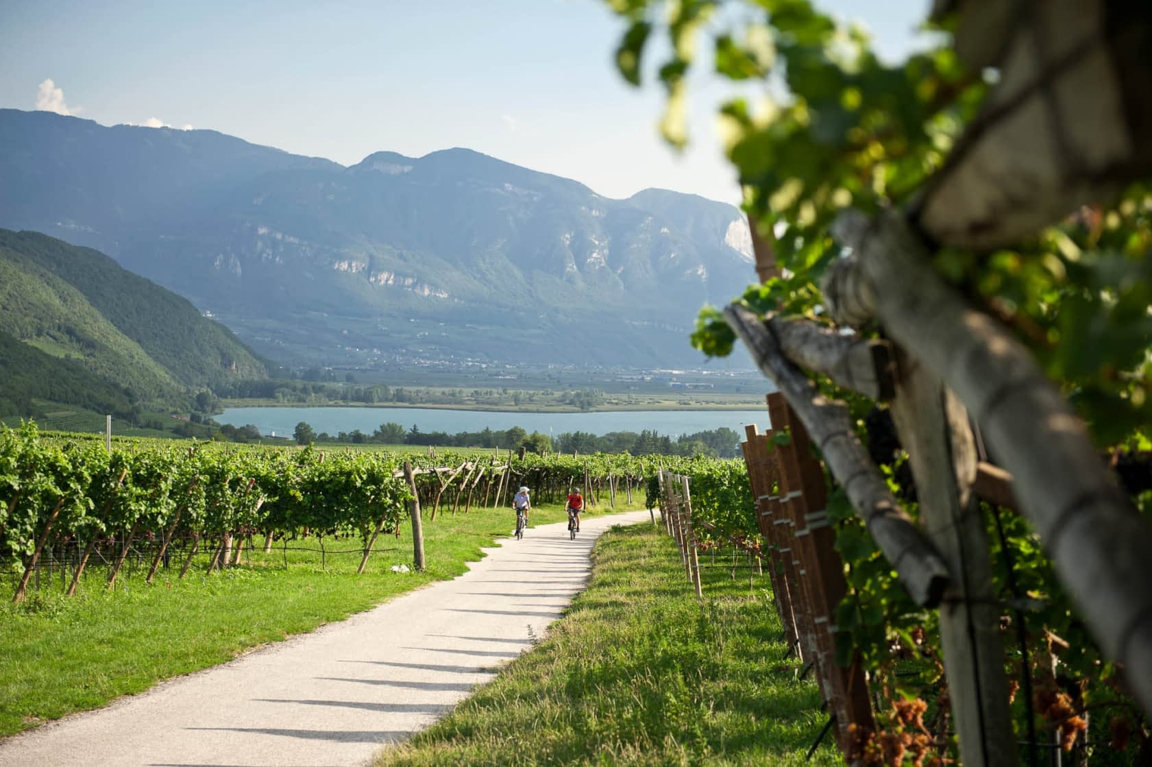 Die mediterranen Talradwege in Südtirols Süden, etwa entlang der Südtiroler Weinstraße, führen zum beliebten Weinbaugebiet rund um den Kalterer See.